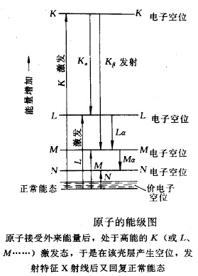 电路 电路图 电子 工程图 平面图 原理图 279_389 竖版 竖屏
